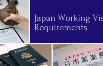 working visa requirements