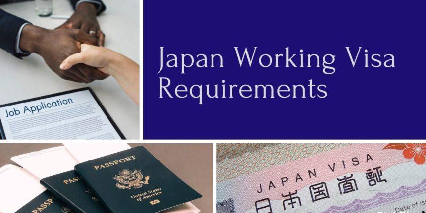 working visa requirements